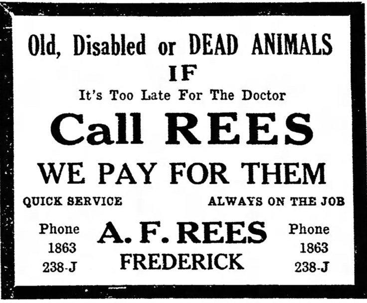 The_News_Mon__Oct_14__1929_Rees AD